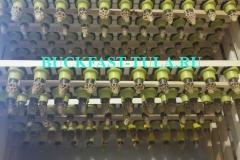 Прививочные рамки в инкубаторе 2